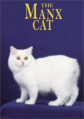 A Healthy Manx Cat
